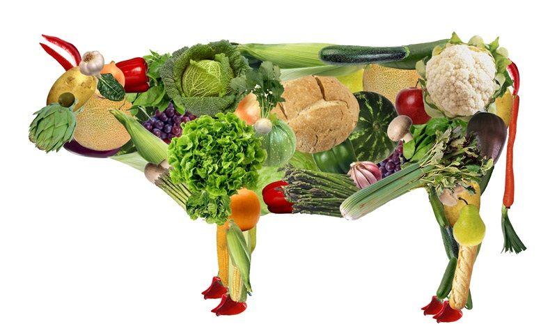 Empresas cárnicas que hacen comida vegetariana. ¿Se apuntan a una alimentación sostenible o son un arma de doble filo?
