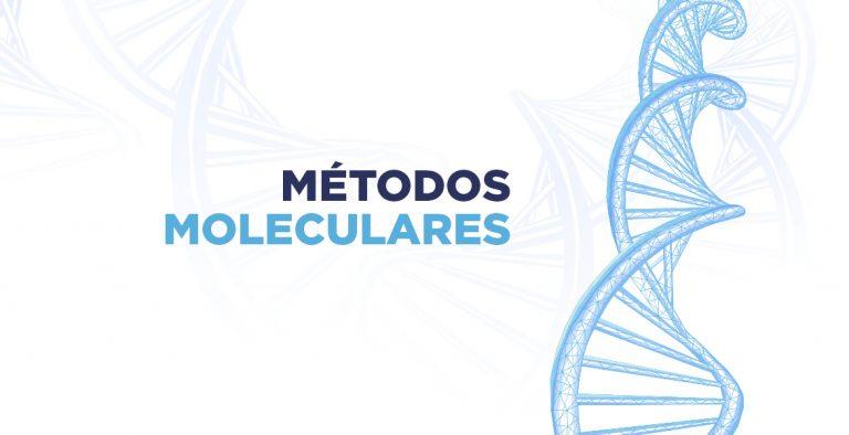 Metodos moleculares