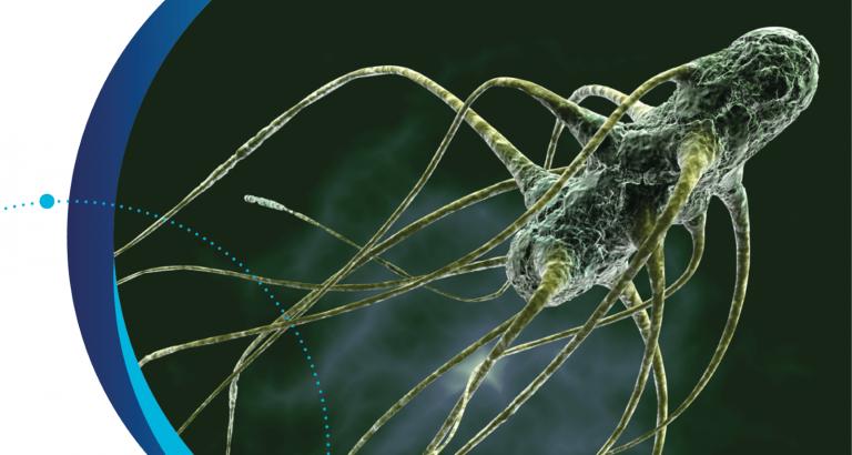 detección de microorganismos mediante métodos alternativos